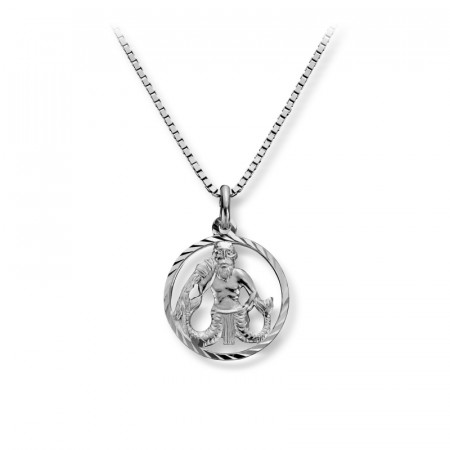 Stjernetegn sølv